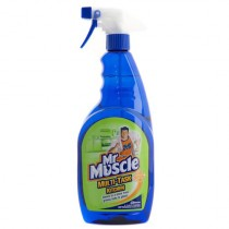 Mr Muscle Multi Surface Cleaner
