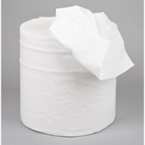 Berties Embossed Centrefeed Rolls 2 ply White